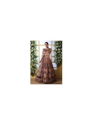 Iconic Sensational Peach Colored Soft Net Base Festive Wear Designer Gown