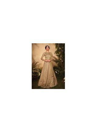 Admirable Beige Color Soft Net Base Gown