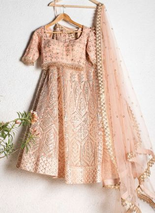 Beautiful Peach Color Soft Net Base With Heavy Work Lehenga With Same Color Blouse