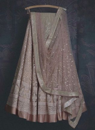 Gorgeous Pale Pink Soft Net Base Sangeet Wear Lehenga Choli